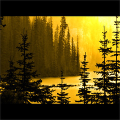 From the Corner of His Eye (josef...) Tags: friends perception bravo britishcolumbia richards legacy lakeohara tistheseason magnumopus greatart firstquality aporia vob photographia imagepoetry naturepoetry bluemoonrising artlibre impressedbeauty lalandscape infinestyle danceswithlight colorsoftheheart handpickedmasterpiece stealingshadows atqueartificia goldenart phvalue fotofanaticus magisterartium sublimemasterpiece miasbest thecubeexcellencygallery capturethefinest visionqualitygroup visionquality100 worldsartgallery artisticandhighqualityshots papascave davincimemories anthologyofbeauty daarklands yourwonderland oracoob oracosm oracope sgtpeppersamazingimages themasterlightpainter50 richardstopgallery flickrvault magicunicornverybest selectbestfavorites richardssilverstar trolledproud beautifulkunstkamera theparagongallery finestgold goldendiamondsworth