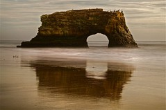 Natural Bridges; Where Are the Monarchs? - Santa Cruz, Ca - Color (Rich Capture) Tags: california trees santacruz pelicans water leaves birds rock clouds canon coast sand long exposure surf grove richard eucalyptus migration milkweed hdr formations naturalbridges seaguls monarchbutterflies ef2470mmf28l unitedstatedofamerica 5dmark2 richardmatyskiewicz matyskiewicz