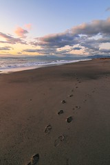 Tracks (enrix64) Tags: sea sky beach clouds landscape coast sand track nuvole mare shoreline traces journey beaches calabria spiaggia orme sabbia impronta cammino areyouready santamariadelcedro platinumheartaward 1001nightsmagiccity mygearandmepremium mygearandmebronze enrix enrix64