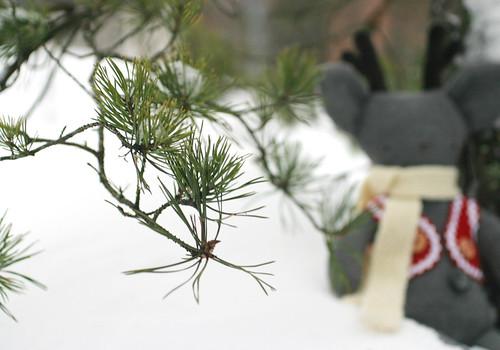 Christmas Rag Pet sneak peek