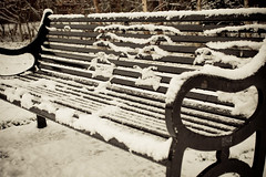 Snowy Bench (Phil O'Kane icedcoffee.ie) Tags: park winter snow cold bench belfast lisburnroad drumglasspark