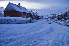 Ayton Snow
