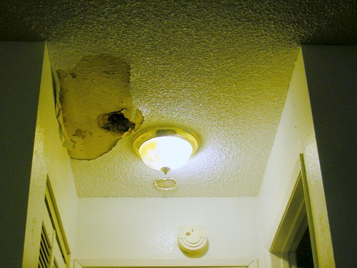 Another leak into my ceiling