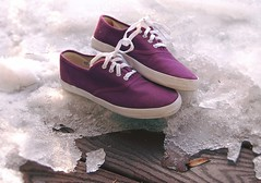 bloody feet. (coco aice.) Tags: wood snow shoe nikon purple lace alice canvas coco sneaker d40