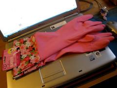 Pink marigolds!