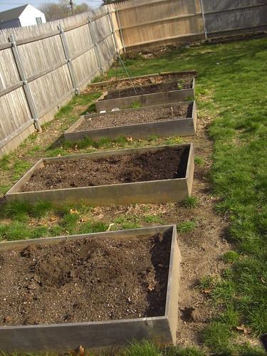 My whole garden
