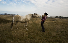Friends (Paulchen...mostly off. :)) Tags: friends horse nature natur magdeburg pferd freunde paulchen hihi hemd kariertes pmesw naturepaulchenpmesw gerwischsachsenanhaltgermany