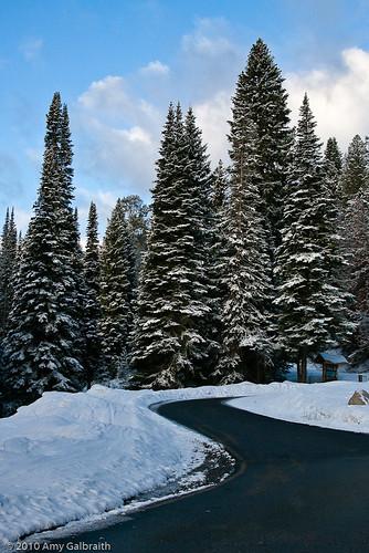 Trail Creek Road