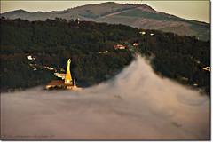 Entre olas de niebla