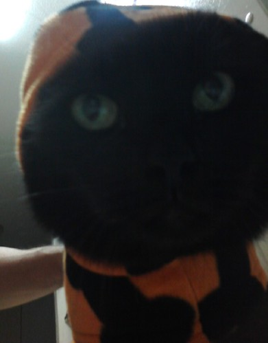 Scully in costume 1.JPG