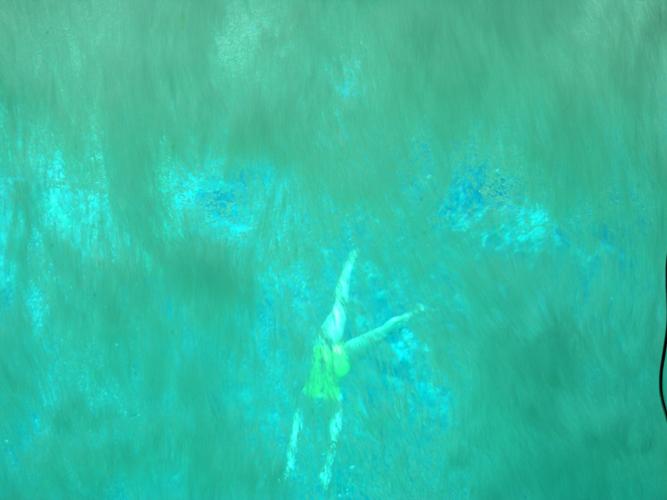 The Wonders Of Weeki Wachee Atlas Obscura