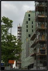 2009-07-14 Cit 2 (Topaas) Tags: rotterdam cit kopvanzuid stadswonen