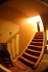 Fisheye stairs (hpulley) Tags: fisheye peleng8mmf35 canondigitalrebeleost1i pentaxscrewtoefmountconverter