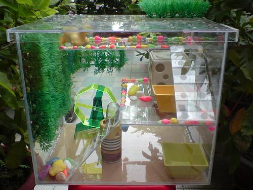 Chuồng mika nhiều thiết kế mới hamster amp; monkey shop