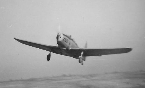 Warbird picture - PT-19