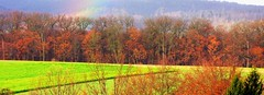 "landscape: nature in winter colors with rainbow - RED  ORANGE  YELLOW  GREEN  BLUE  INDIGO  VIOLET (eagle1effi) Tags: canon naturemasterclass damncool naturescreations eagle1effi allinone powershot bridgecamera canonpowershotsx1is djangosmasterclass exact hybrid geomapped regionstuttgart landschaft tubingen by©eagle1effi artandexpression cool landscapes ""django´s masterclass"" masterclass colorful wald schönbuch wood forest silvan colorphotoaward tuebingen germany deutschland badenwuerttemberg württemberg stadttübingen effiartkunstcopyrightartisteagle1effi rainbow rainbowcolors canonsx1ispowershot canonsx1is landscape effiarteagle1effi landschaften paysage paysages yourbestoftoday sx1 beautifulcityoftubingengermany beautifulcityoftübingengermany tubinga tübingen tagesbeste ae1fave favoriten lieblingsbilder flickr photos fotos beste bestof byeagle1effi selection selektion auswahl dibengâ dibenga effiart kunst erwin effinger edition tubingue"