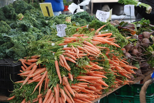 carrots at the Greenmarket