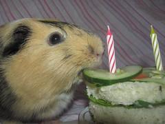 Lemons eats her cake (ChocoladeHam) Tags: birthday cute girl cake candles yum eating adorable lemons aww