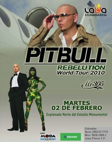 Pitbull - Estadio Monumental