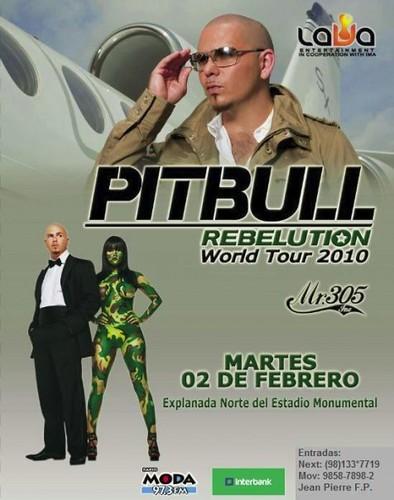Pitbull - Estadio Monumental