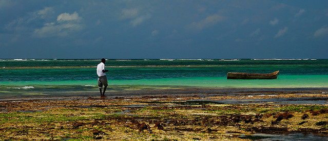 Fisher in Diani Beach (pan. view)