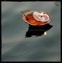 A Diya for a Prayer (designldg) Tags: india water lamp colours symbol dusk faith atmosphere panasonic soul varanasi spiritual shanti kashi ganga ganges ghats benares benaras uttarpradesh भारत indiasong dmcfz18