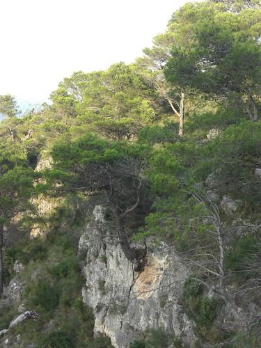 Font de la Granata 35_resize