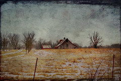 Quail Ridge Farm (Delany Dean) Tags: texture rural barns memoriesbook ninianlif skeletalmess memoriesbook5 magicunicornverybest selectbestexcellence magicunicornmasterpiece sbfmasterpiece