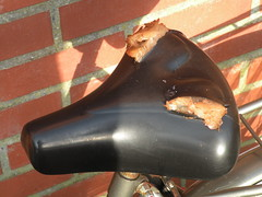 Broken Saddle (Stan Giling www.stangiling.com) Tags: brick bicycle wall stuffing torn saddle bulging muur schuimrubber feits zadel fietszadel bakstenen scheur gescheurd vulling uitpuilen