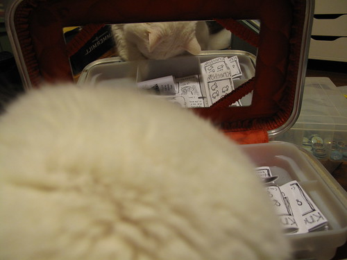 Nilla peeking through my zines.