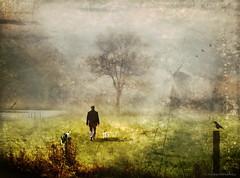 Foggy Morning (h.koppdelaney) Tags: life morning art field fog digital photoshop reflections landscape countryside symbol walk space magic dream happiness philosophy inner dreamy metaphor psyche symbolism psychology archetype