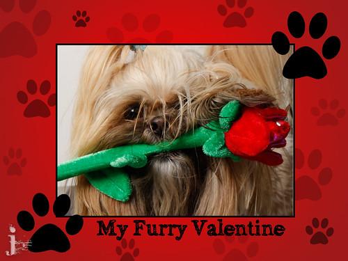 blog-valentine-3