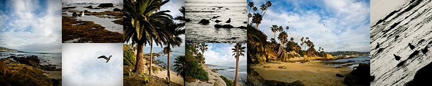 laguna beach cliff street