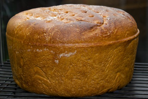 Dutch Oven Big Bread
