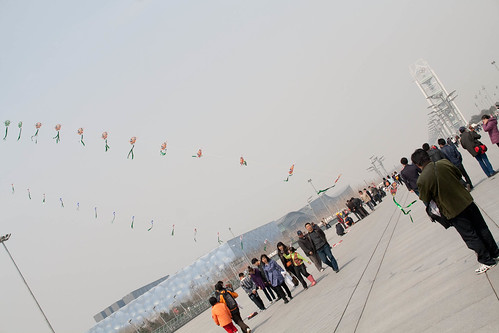 Kite flying at Olympic Park