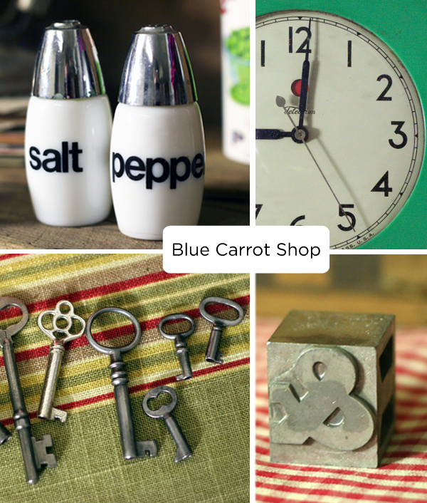 Blue Carrot Shop