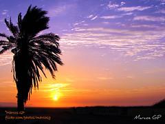 Una tarde cualquiera (Marcos GP) Tags: trip viaje sunset peru atardecer turismo ocaso ica pisco peruvian purix marcosgp palemta