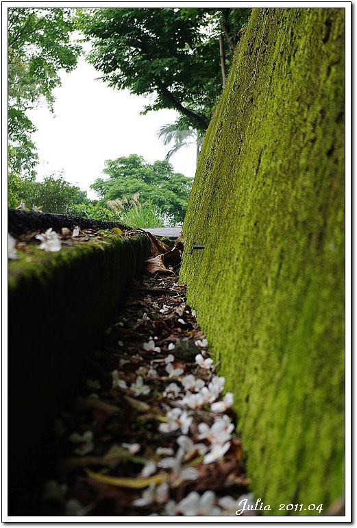 仁山植物園 (23)
