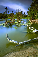 Small River Canggu (tropicaLiving - Jessy Eykendorp) Tags: blue light sky bali green nature water river indonesia landscape explore efs1022mm canggu outdoorphotography canoneos50d batubolong tropicaliving hoyandx400 purabatubolong hitechfilters rawproccessedwithdigitalphotopro tiffproccessedwithadobephotoshopcs3 smallrivercanggu