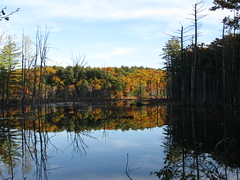 Old Hampshire with the Girls 574 (destiny_studios) Tags: autumn lake reflection fall water newhampshire letterboxing foliage