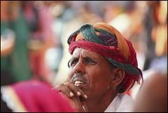 Strained look... (Hema Narayanan) Tags: pushkar rajasthan camelfair thardesert pushkarcattlefair pushkarfair2009 pushkarfestivalof2009 cattlefairatpushkar