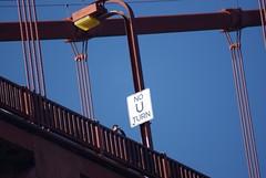 Common Sense (ranok) Tags: ocean california bridge google goldengate blimp sanfran 23andme