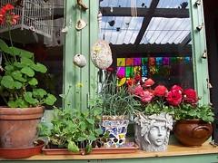 my home (Romany Soup) Tags: flowers colour seashells interiors boho gypsy windowsill plantpot