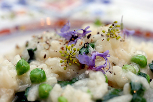 Scallop and pea risotto with flowers