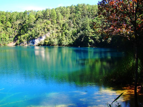 Lago No. 1 - Ensueño (05)