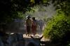 0008 Lady cowherds--Mandalay , Myanmar (ngchongkin) Tags: niceshot harmony showroom myanmar soe shiningstar mandalay nationalgeographic musictomyeyes themoulinrouge cowherds beautifulshot superphotographer anythingyoulike youmustrememberthis peaceaward avpa flickrhearts flickraward flickrbronzeaward throughoureyes heartawards eperkeaward dazzlingshots flickridol flickrestrellas highqualityimages spiritofphotography photographersgonewild grouptripod doubledragonawards photographerparadise artofimages angelawards thebestvisions freedomhawkaward ablackrose selectbestfavorites mycivilization sapphireawards divinecaptures mygearandme moongoddessawards imperialimages fabulousplanetevo thehouseofimagegallery goldstarawardlevel1 2heartsaward flickrbronzetrophy lomejordelafotografia threeheartsaward amorpelavida photographyforrecreationbronzeaward canoncameragroup vistaenfotografosmacaronesicos