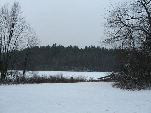 Snow-covered lake