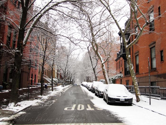 IMG_2824_snow.jpg