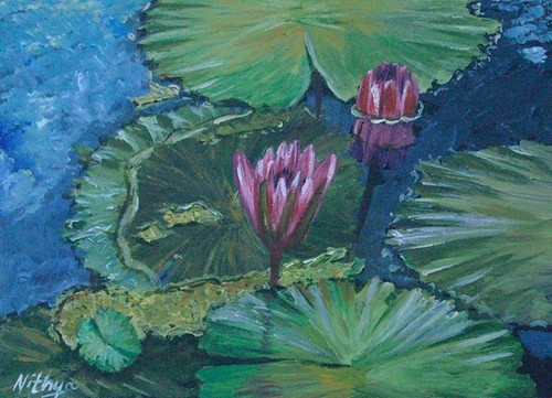Waterlily #11