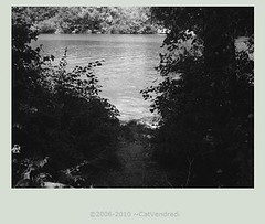 Black&white_Sequana_by_CatVendredi (Jenny Scott Adam) Tags: blackandwhite riverbank laseine sequana